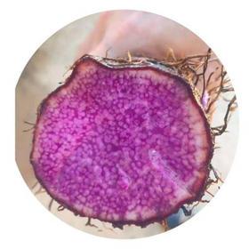 「儋州」消费扶贫每日推荐-紫玉淮山8斤/盒-盛菲农业开发公司的扶贫产品