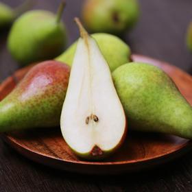 比利时啤梨 宝宝辅食 吃软不吃硬  进口水果 香甜多汁  1.6斤 5个装包邮