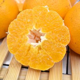 四川眉山春见耙耙柑 新鲜水果橘子 现摘现发 酸甜多汁 5斤装包邮