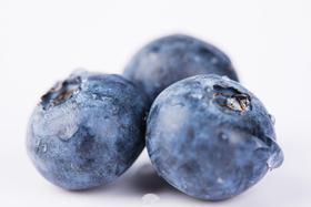 【包邮-100ml】蓝莓纯露