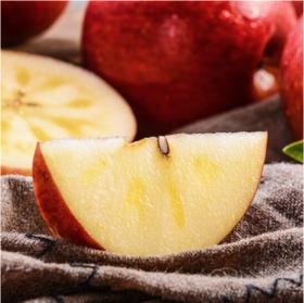 四川丑苹果 生态野生糖心苹果 农家自产天然无添加红富士8斤包邮