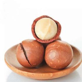 【夏威夷果】休闲食品新货夏威夷果连罐250g奶油味送开果器进口坚果零食品