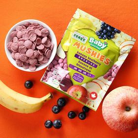 加拿大贝贝美食家香蕉蓝莓酸奶味小溶豆23 g 全龄