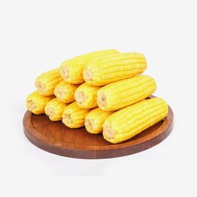 德乐圆黄糯玉米(礼盒装) 8根/箱