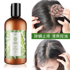 头发不痒!【迷迭香除螨止痒洗发水】迷迭香抑制头螨滋生  植物控油 拯救受损头皮