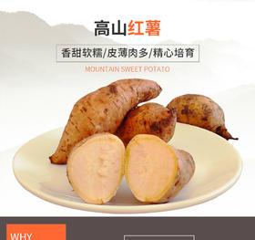 高山红薯 香甜软糯 皮薄肉多 细腻香甜 高山培育 营养健康