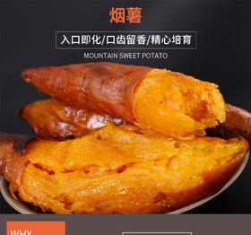 烟蜜薯 入口即化 口齿留香 天然健康 蜜油四溢 香气迷人 产自高山 天然健康