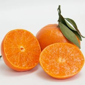 ️口之津橘子,一件9斤