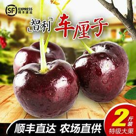 智利车厘子进口新鲜水果胜美国黑珍珠加拿大2斤双J大樱桃现货