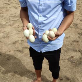 「万宁」北坡鸭蛋-贫困户苏兴福的鲜鸭蛋、咸鸭蛋(仅限万宁地区购买)