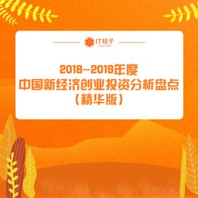 新品发售《2018-2019年度中国新经济创业投资分析盘点》(精华版)