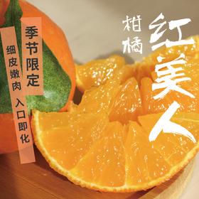 [红美人柑橘 下单后5天内发货]细皮嫩肉红美人