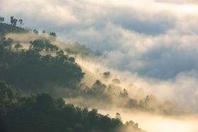秘境养生之地   春节普洱安纳塔拉之旅(全程度假式酒店 西双版纳+景迈山)