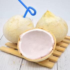 泰国椰皇 椰青 老椰子 清甜椰汁  椰肉滑嫩 圆润饱满 4枚装(单果:300-450g)包邮