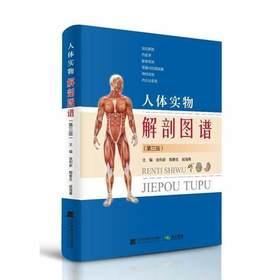 人体实物解剖图谱(第三版)第3版 系统解剖学人体解剖彩色图谱人体医学实用局部运动系统解剖学局部解剖学 辽宁科学技术出版社