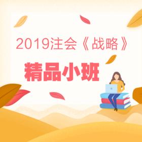 2019注会《公司战略与风险管理》精品小班