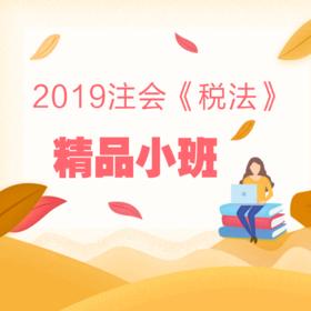 2019注会《税法》精品小班