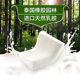 沃荷(KnowHow)泰国天然乳胶枕 成人橡胶记忆颈椎枕枕芯护颈枕头