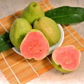 台湾红心芭乐 营养丰富 甘甜回味 清脆香甜 爽口舒心 2.5kg