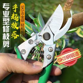 老A 果树剪枝剪刀花剪 园艺剪刀家用省力剪子 剪果树 园林修枝剪