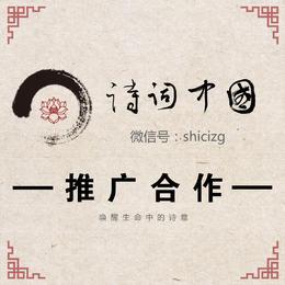 中华诗词论坛广告位推广