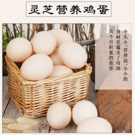 远山农牧—灵芝鸡蛋30枚 富硒营养 新鲜农家土鸡蛋