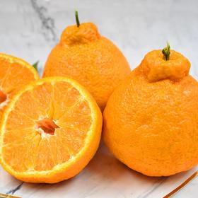 眉山不知火丑橘  大果单果75mm  5斤/8斤 新鲜采摘 产地直发 包邮