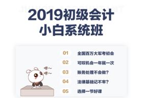 2019初级会计小白系统班