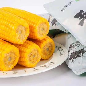 优选新品|东北有机黄糯玉米 甜糯富硒新鲜美味 10根/箱(新老包装随机发货)