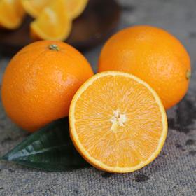 埃及橙 肉质鲜嫩  酸甜多汁 8枚装 (单果180g-220g)包邮
