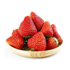 丹东99草莓3斤装,新鲜现摘,顺丰直发