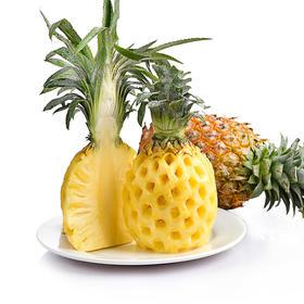 香水菠萝 云南红河直采直供 5斤装(3-5个)