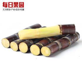 广西黑皮甘蔗新鲜 现砍 甘蔗汁 脆甜多汁新鲜水果甘蔗 约4kg-864802