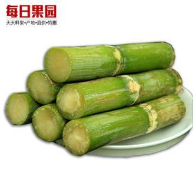陶山甘蔗 青皮甘蔗 新鲜甘蔗水果绿皮果蔗 1箱约6斤-864801