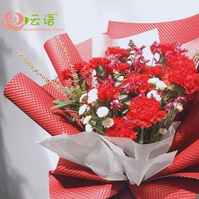 5#{云间鲜花}     康乃馨系列感恩有你
