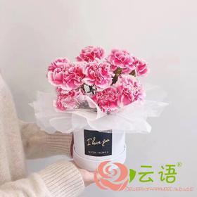 6#{云间鲜花} 重粉康乃馨抱抱桶