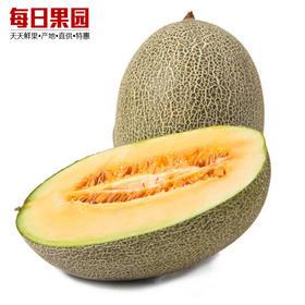 新疆西周哈密瓜 4.8元/斤  精选单颗4.6斤 新鲜水果特级精选 吐鲁番西周蜜瓜-835041