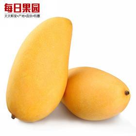 台湾水仙芒  特优价7元/斤 精选1.6斤装 新鲜水果大水仙芒果香甜-835103