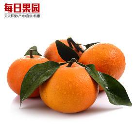 优级沃柑 9元/斤 精选3斤装 贵妃皇帝贡柑橘子新鲜水果桔子-835071