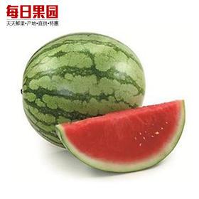 特级麒麟西瓜 精选单个9斤 清新爽甜 精选新鲜水果 特优价3.8元/斤-835037