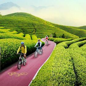 杭州出发:相约网红自行车公园,骑行最美茶海小径(1天活动)