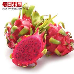 特级海南红心火龙果 4.8元/斤 精选3.2斤装 超甜天然生态新鲜水果-835093