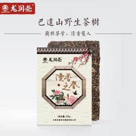 【新品上市】漫香之春 兰桂芬芳 清香袭人 巴达山普洱生茶砖250g