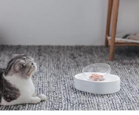 小佩15°可调式猫碗 单碗