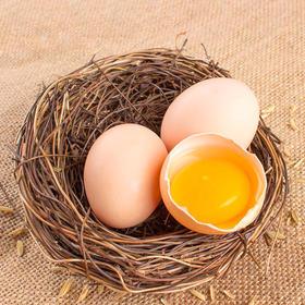安阳扶贫土鸡蛋丨60枚装丨十堰主城区包邮