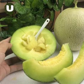 爆品【梅陇蜜汁瓜】产地:海南规格:2个/组,5斤左右
