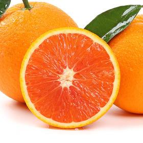 湖北秭归 中华红橙  甜橙子红橙 果肉鲜美 多汁 5/9斤(单果60mm以上)包邮