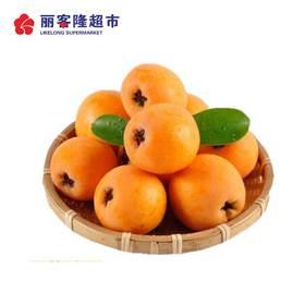 GA 枇杷 新鲜水果480g-500g/份