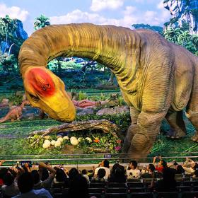 【北京国家体育馆】大型全景科幻演出—远去的恐龙门票
