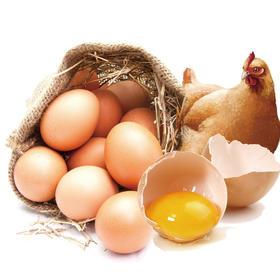 湖南土鸡蛋 50个/100个